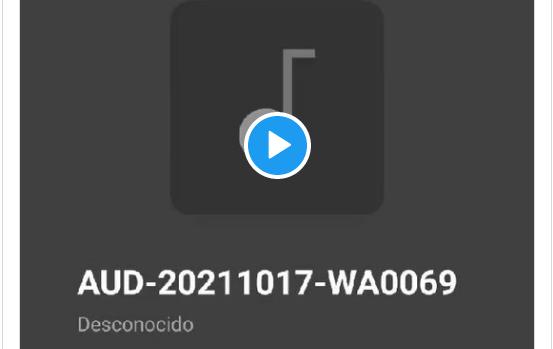 Audio vía WhatsApp: La desesperación en la Ciudad del Betis